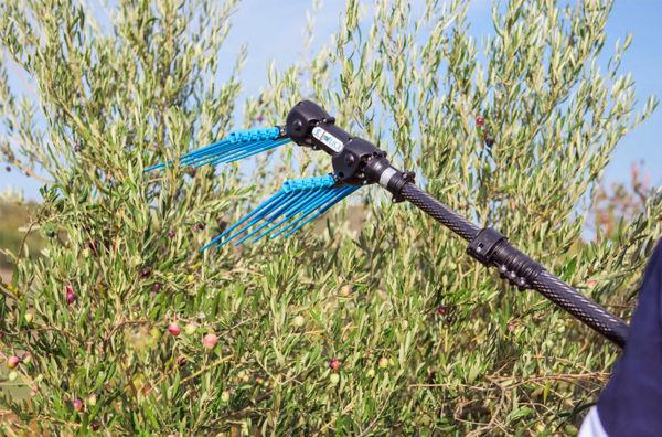 Immagine per la categoria Attrezzatura per olivicoltura