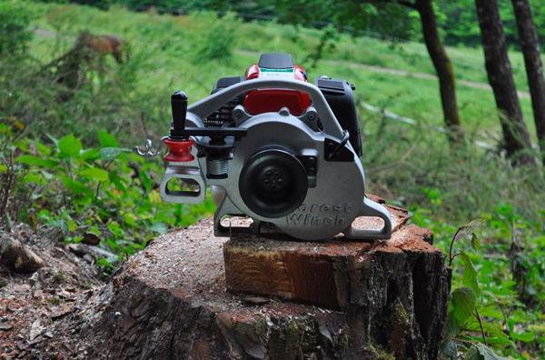 Immagine per la categoria Verricelli forestali